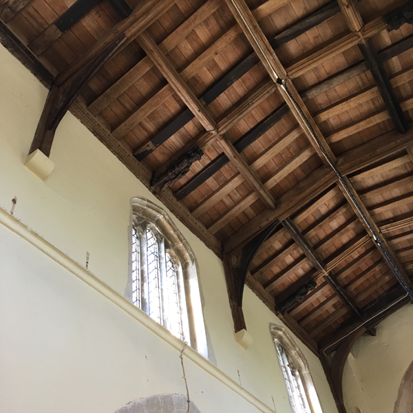 Searching for signs of bats in the Church ceiling