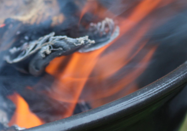 Image of flames in a fire