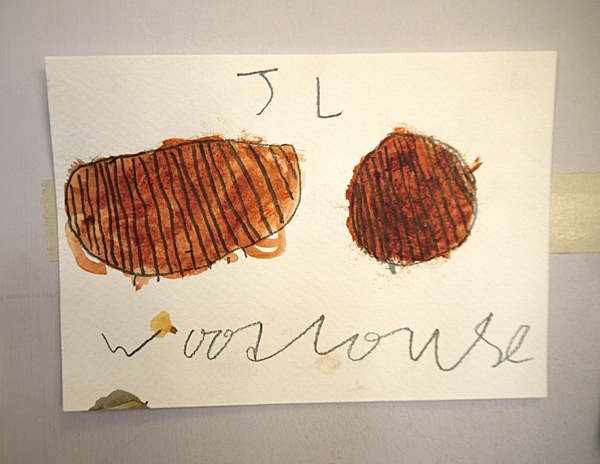 Picture of a Woodlouse by James