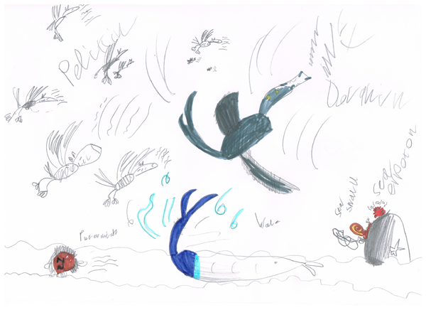 Gabriel's under-sea soundscape with sea eruption, pelicans, puffer fish and a whale