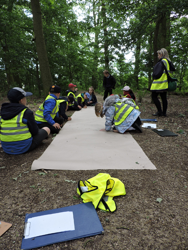 Group drawing in aunties woods 1