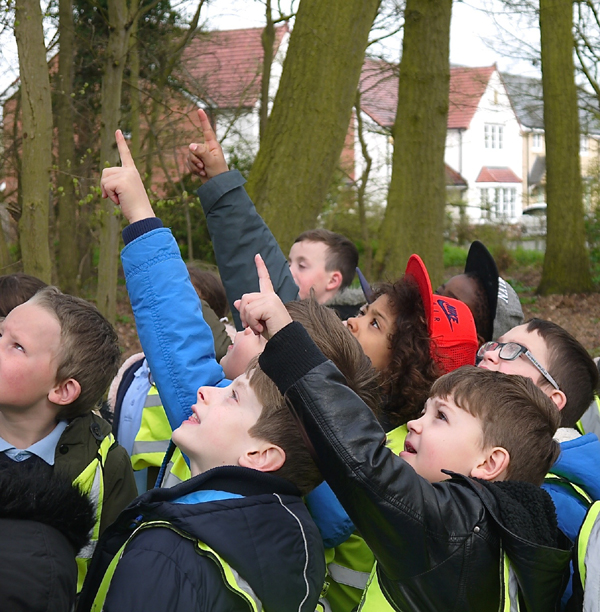 Children pointing - I think it's a bat