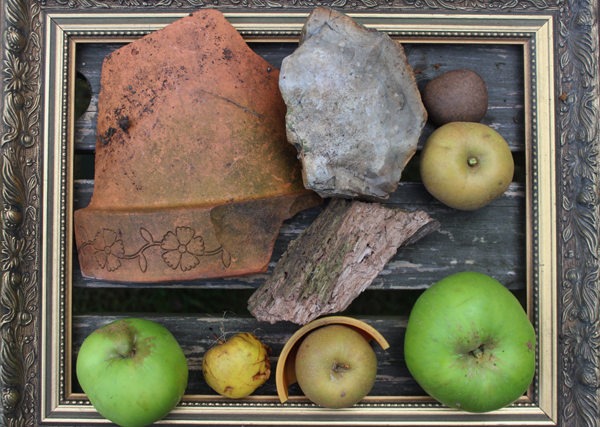 Collection of apples, bark and a broken pot in a frame