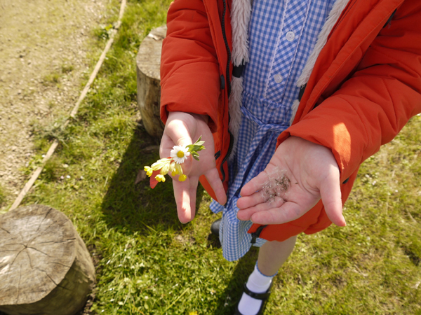 Child hands holding petals and leaves